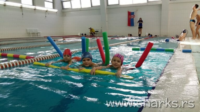 Skola plivanja – swimming school Sharks Belgrade